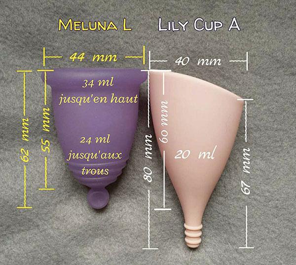 comparaison taille Lily Cup et MelunaL