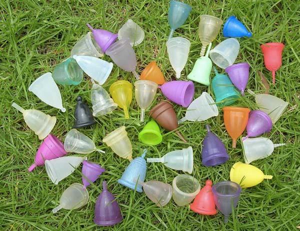 éleveuse de cups