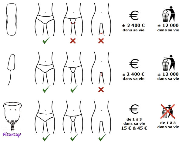 coupe menstruelle économique