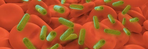 syndrome du choc toxique bactéries