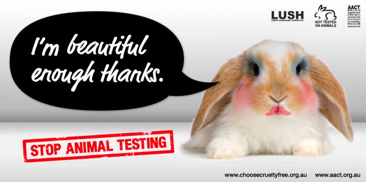 animal testing cruelty free chez LUSH