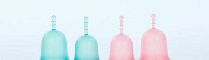 4-louloucup-bleues-et-roses